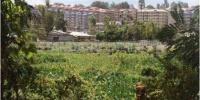 Land grabbers now strike Nairobi Dam Read